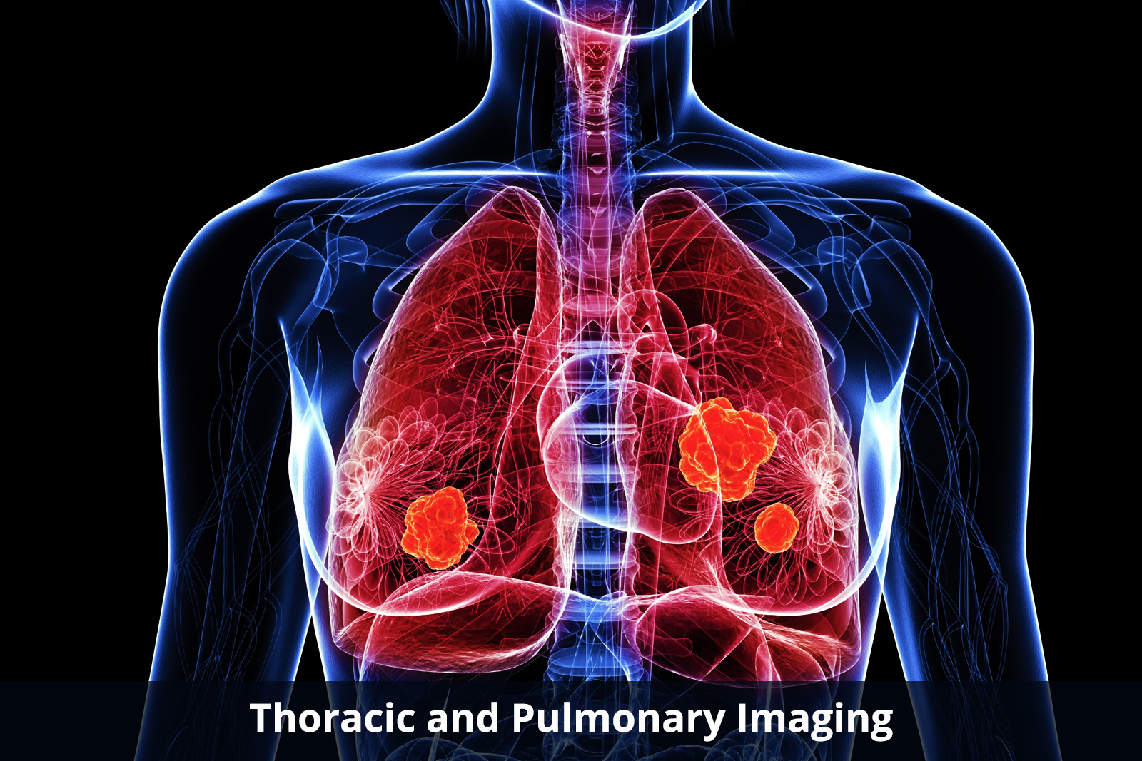 thoracic-and-pulmonary-imaging-about