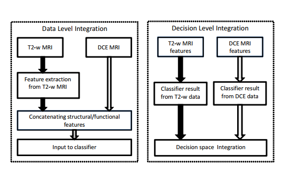 Integrating-Structural-and-Functional-Imaging