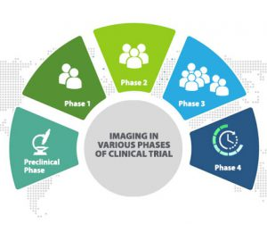 Phases-in-Clinical-Trials